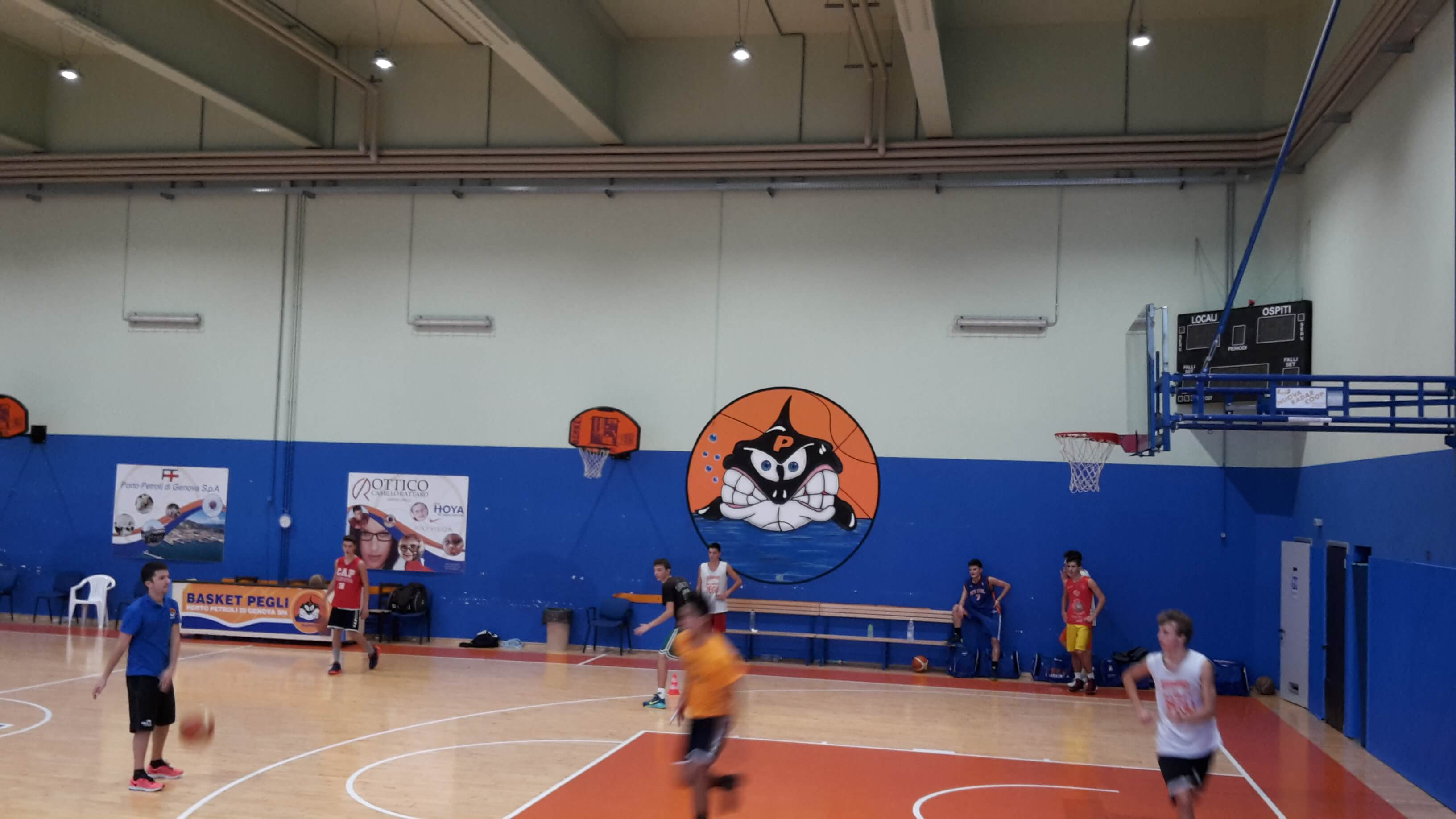 Palasharkers-pegli-palazzetto-per-il-basket-genova-3